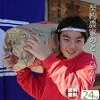 米 30kg 28年 送料無料 こしひかり 埼玉県 契約農家のお米 玄米 精米無料(白米27kg)