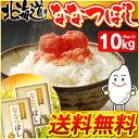北海道産 ななつぼし 10kg(5kg×2袋)[送料無料 白...