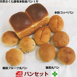 【送料無料】パンパンセット2000円天然酵母パン&米粉パン&雑穀パン詰合せ