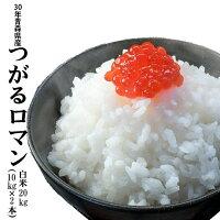 青森米のエースつがるロマン白米20kg