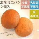 【小麦卵乳製品不使用】玄米ミニパン(2個入) 【グルテンフリ