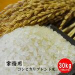 【業務用米】【生活応援米】佐賀県産コシヒカリブレンド米30kg