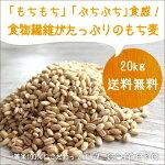 もち麦4.5kg3,980円900g×5袋入り送料無料