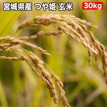 特別栽培米宮城県産つや姫玄米30K