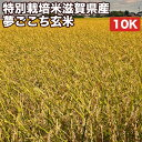 特別栽培米滋賀県産夢ごこち玄米10Kお米【選べる搗き方白米・ハイガ米・玄米・8分つきなど】完全真空包装米(真空包装代 無料)長期保存・鮮度維持・カビ、害虫などの繁殖 防止に♪美味しいご飯。贈り物にも。