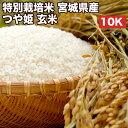特別栽培米宮城県産つや姫玄米10Kお米【選べる搗き方白米・ハイガ米・玄米・8分つきなど】完全真空包装米(真空包装代 無料)長期保存・鮮度維持・カビ、害虫などの繁殖 防止に♪美味しいご飯。贈り物にも。
