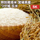特別栽培米宮城県産つや姫玄米5Kお米【選べる搗き方白米・ハイガ米・玄米・8分つきなど】完全真空包装米(真空包装代 無料)長期保存・鮮度維持・カビ、害虫などの繁殖 防止に♪美味しいご飯。贈り物にも。