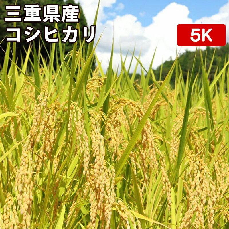 米・雑穀, 玄米  5kg 8