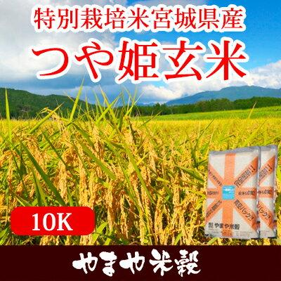 特別栽培米宮城県産つや姫玄米10K