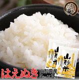 令和元年産 はえぬき 山形県産 精米 10kg (5kg×2) 令和元年産 送料無料 おこめ お米 備蓄用 買い置き