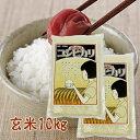 昭和のコシヒカリ(令和2年産)(新潟県産)玄米10kg(5kg×2)【送料無料】