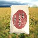 長岡産コシヒカリ特別栽培米(令和2年産)5kg【送料無料】