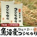 中魚沼産コシヒカリ(平成29年産) 10kg(十日町地区限定米)【送料無料(本州のみ)】