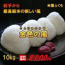 米 新米 【送料無料】 平成30年産 岩手県産 金色の風 10kg 白...