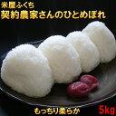 米 【送料無料】 岩手県南ひとめぼれ5kg 白米 玄米もOK...