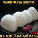 米 【送料無料】 金色の風 10kg 白米 玄米 分づき米も可 平成30年産 岩手県産 新品種 発送日当日精米 10キロ 3個まで買えます ギフト 贈り物にも