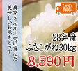 28年 千葉県産ふさこがね 30kg 一等米 【送料無料】【米30kg送料無料】(一部地域を除きます)北海道、九州地方は送料(+400円)、沖縄は送料(+2000円)別途かかります 【玄米は30kg、精米は約27kg】
