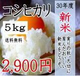 新米!千葉県産コシヒカリ5kg