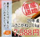 29年 千葉県産ふさこがね 20kg 一等米 【送料無料】(一部地域を...
