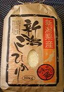 新潟県こしひかり特別栽培米