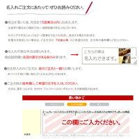 ネームプレート名入れ【盗難防止・オンリーワンギフトに】【傘】