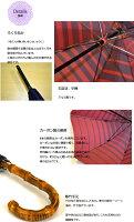 甲州織グラデーションボーダー傘8本骨60cm【長傘/雨用】
