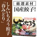 【しんいちろう餃子(春みどり)_24個、たれ付き】ブランド豚使用!粉夢の餃子(12個×2箱)冷凍、東北、岩手、国産。ご当地グルメ、お取り寄せ。