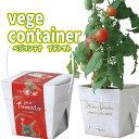 【あす楽】ベジコンテナ プチトマト 栽培セット 野菜 栽培キ