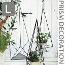 ハンギング 吊るし 吊り トレイ アイアントレイ プリズムデコレーション LARGE 壁面 掛け 吊り下げ 植物 ガーデニング ハンギングアイアン インテリア JARDERFER CNGY4129*L