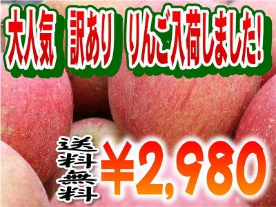 人気商品にて売り切れ御礼の訳有りりんごをなんとか確保しました!今回はキズも少なく味もトッ...
