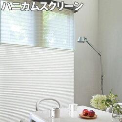 ニチベイハニカムスクリーンレフィーナココン(防炎)ツインスタイル(ハニカム+プリーツ)ワンチェーン式幅60~80cm×丈30~60cm