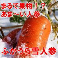 雪にんじんポタージュ