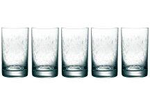 Bohemiaボヘミア【ラスカボヘミアボヘミアンドリームタンブラー5客セットKA808/230/5】タンブラーグラスボヘミアガラスご贈答ギフトプレゼントお祝い結婚祝い内祝い