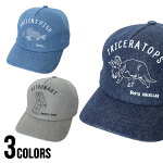 【ゆうパケット送料無料】DNM4.6BillionCap(TESTIFY)帽子メンズレディースユニセックス秋冬キャップお揃いリンクコーデ帽子男女兼用メンズレディース親子アイテム