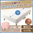 【送料無料】【シングル】ポケットコイルマットレスベッド[脚30cm]/ベッド マットレス付き ショート...