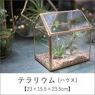 【10%OFF&クーポンあり※期間限定】テラリウム[ハウス]【23×15.5×23.5cm】/植木鉢おしゃれガーデン雑貨かわいいインテリアガラス