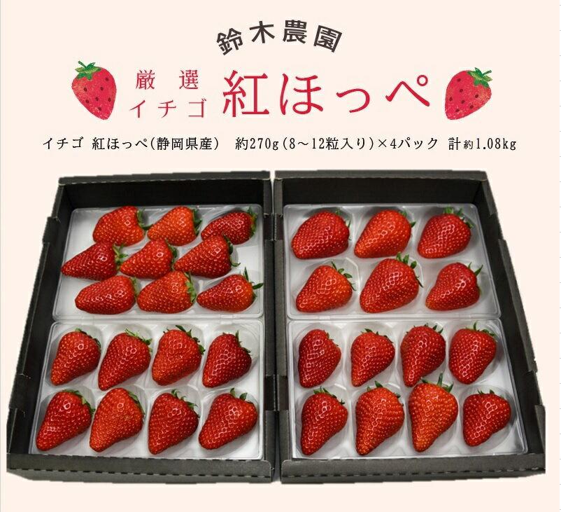 【産直商品】「紅ほっぺ」いちご約270g×4P計1.1kg(要冷蔵)(1パック6〜11粒入り)