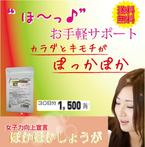 金時生姜 しょうが サプリメント【ぽかぽかしょうが 30日分】 ダイエット 冷え性 基礎代謝 代謝...