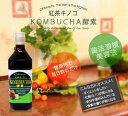 菌活 酵素ドリンク「 紅茶キノコ KOMBUCHA 酵素 」 送料無料 紅茶きのこ 紅茶キノコ…