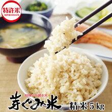 「楽笑満足芽ぐみ米5kg」健康米特殊三分搗き米東京フーズクリエイトお米糖質が気になる方へ特許米栄養豊富完全栄養食精米ダイエット燃焼脂肪痩せやせ減量