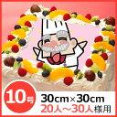 写真ケーキ(四角) 10号 生クリーム【冷凍 到着後は冷蔵庫...