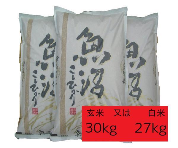 【新米予約】魚沼産コシヒカリ新米玄米30k(白米27k)特A食味最上級ランク