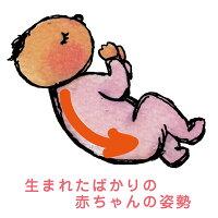 【助産師がプロデュースの授乳クッション】特許取得!SANGOくっしょんオーガニック生地選べるカバー洗える抱き枕安心安全な赤ちゃんが心地よく寝るベット日本製沖縄産【送料無料】