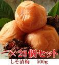 【紀州産南高梅】自家農園で栽培した天然しそ使用しそ漬梅500g × 20個セット 【和歌山県産】 【10P03Aug09】