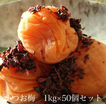 かつお梅1kg × 50個セット 【和歌山県産】