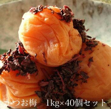 かつお梅1kg × 40個セット 【和歌山県産】