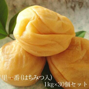 里一番(はちみつ入)1kg × 30個セット 【和歌山県産】 【10P03Aug09】