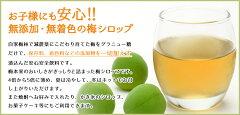 梅シロップ500ml1箱(12本入り)(梅ジュース)