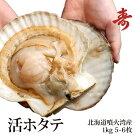 北海道噴火湾産の特大活ホタテ1kgセット(殻付)お刺身やバーベキューに!冷蔵ほたて帆立道産ギフト贈答父の日母の日内祝い