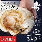 北海道噴火湾産の特大活ホタテ3kgセット(殻付)お刺身やバーベキューに!冷蔵ほたて帆立道産ギフト贈答父の日母の日内祝い